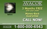 Avacor