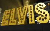 Elvis Coin